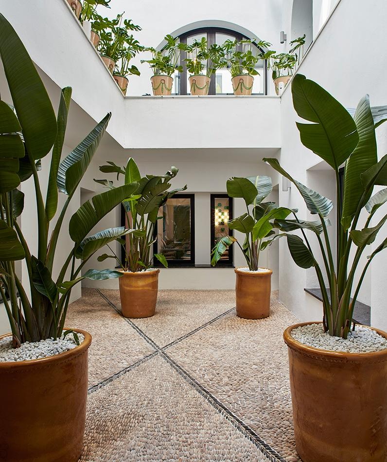 melian_randolph-patio-interior-hotel-valeria-roommate-4